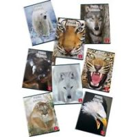 Maxi quaderni A4 Animal World Pigna