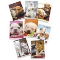 Quaderni A4 Animal World Pigna